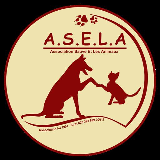 Association Sauve Et Les Animaux